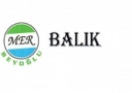 Mer Balık Logo