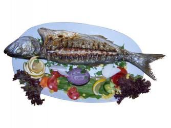 Mer Balık